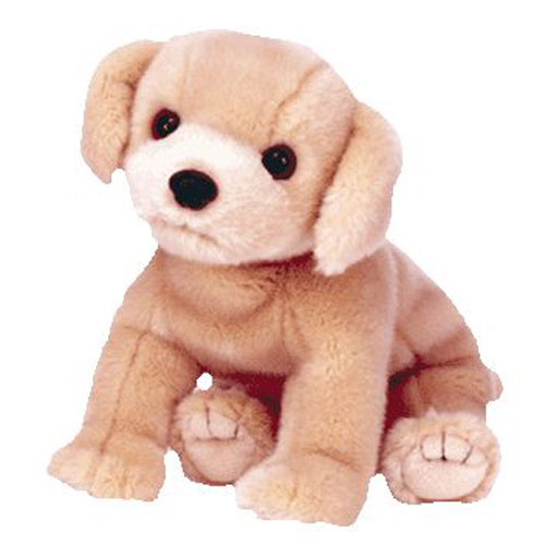 16a6c9a5717 TY Beanie Buddy - FETCH the Golden Retriever Dog (10 inch)  BBToyStore.com  - Toys