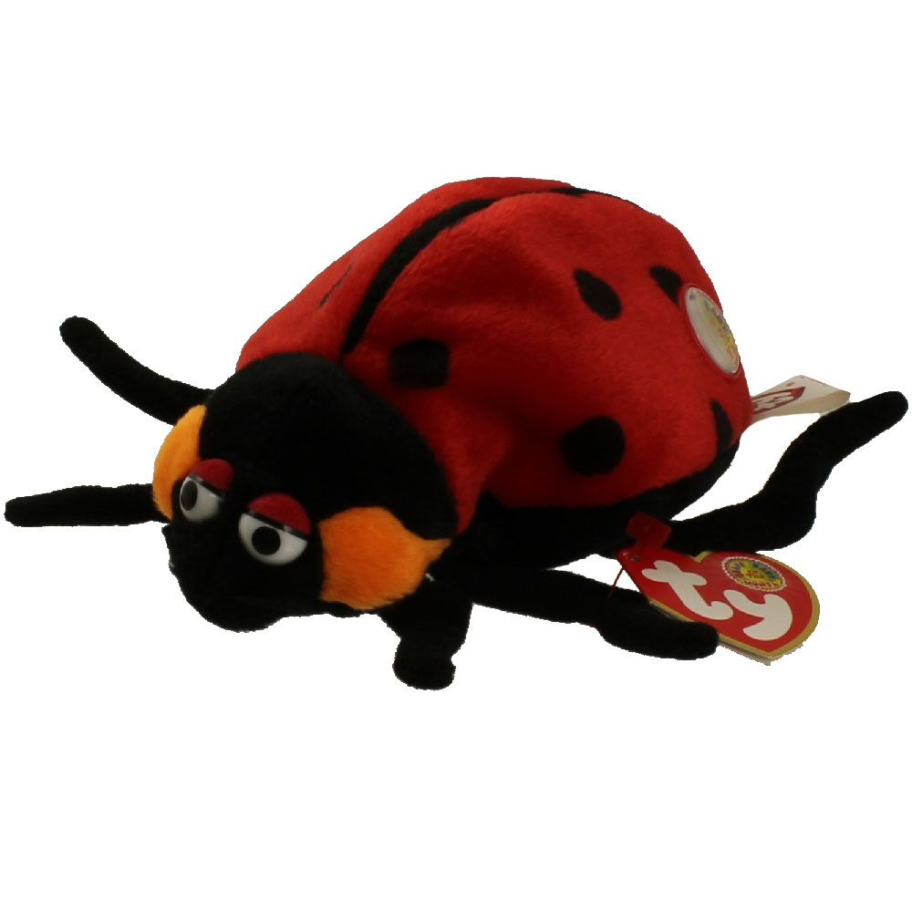 ty beanie baby - countess the ladybug  bbom june 2004   5 inch   bbtoystore com