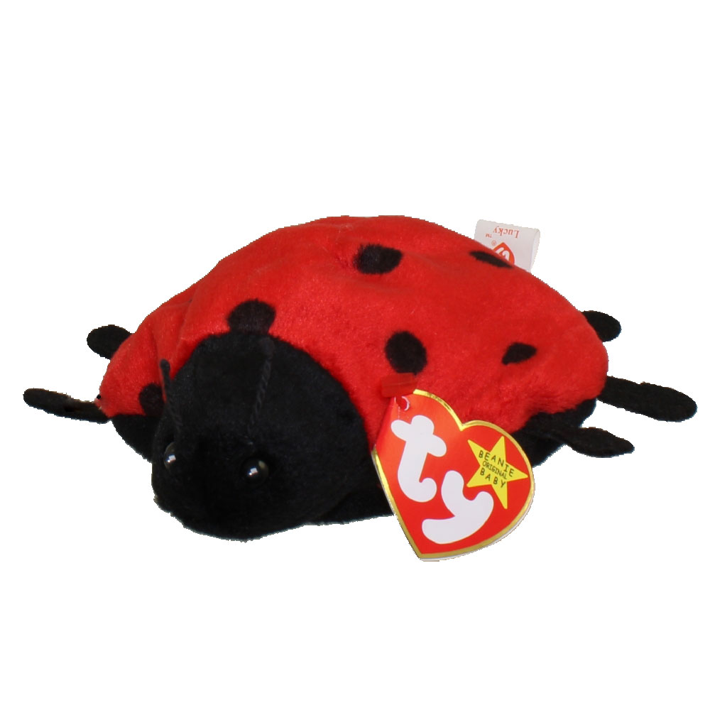 ty beanie baby - lucky the ladybug  5 inch   bbtoystore com