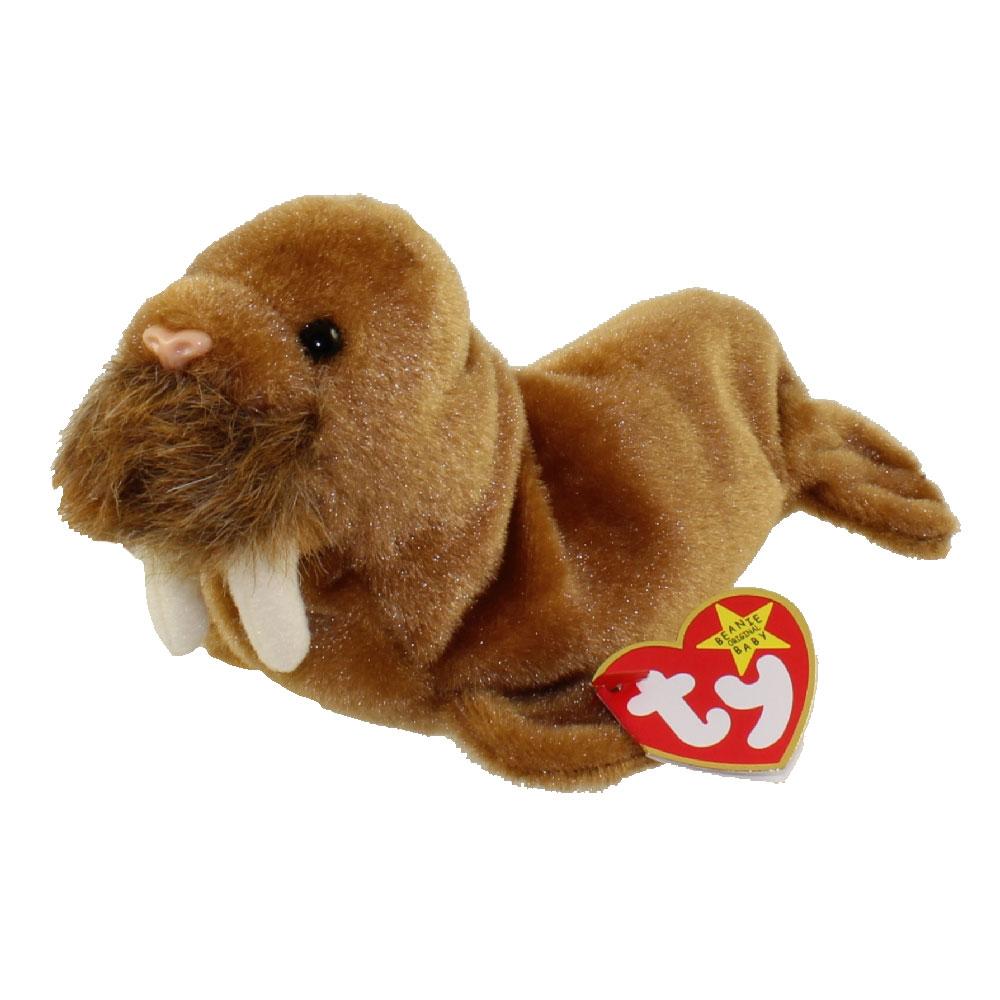 ty beanie baby - paul the walrus  7 inch   bbtoystore com