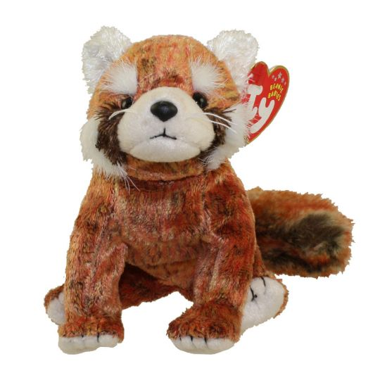 TY Beanie Baby - RUSTY the Red Panda (5.5 inch)  BBToyStore.com - Toys 82c428f4546