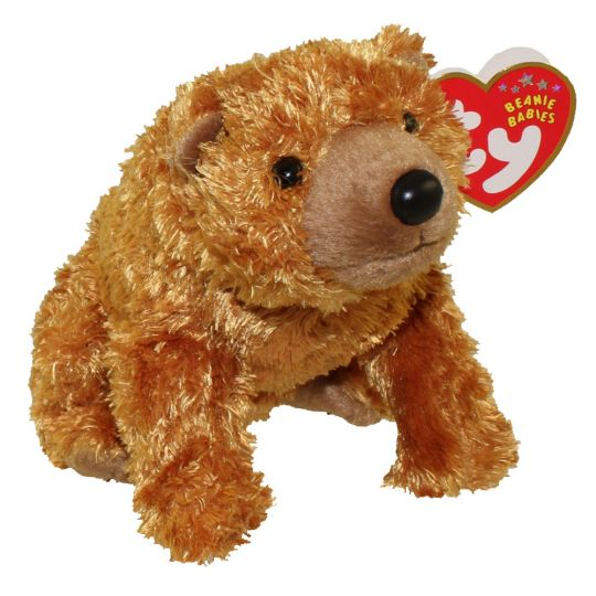 TY Beanie Baby - SEQUOIA the Brown Bear (5 inch)  BBToyStore.com - Toys f361fa84874